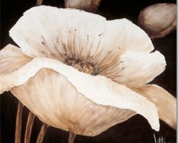 Jettie Roseboom - Amazing Poppies II