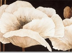 Jettie Roseboom - Amazing Poppies III